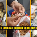 Attempt to Smuggle Foreign Currency in Peanuts